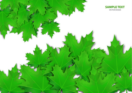 Abstract background from a variety of bright maple leaves on a white background. Stylish modern design for flyers, posters, flyers, banners. Vector illustration
