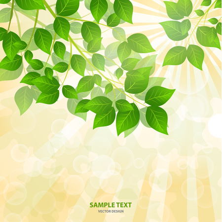 Forest background with sunlight coming through the green leaves. Green background with fresh spring foliage, sparkles and sunbeams. Young leaves in the rays of spring dawn. Close-up. - Vector graphics