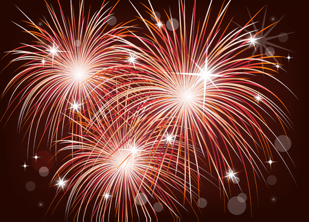 Bright colorful fireworks in the night sky. Holiday, fun. Vector illustration for your design.