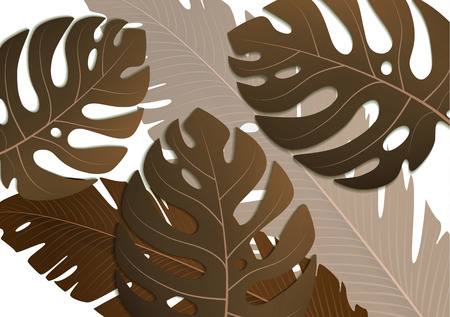 Tropical exotic banana leaves and monster on white background. Amazing leaf pattern. Botanical classic illustration. Ideal for wallpapers, web page backgrounds, surface textures, textiles.