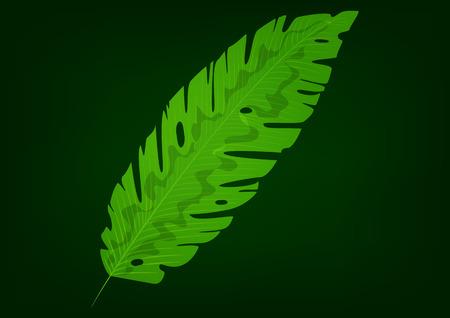 Isolated green banana leaf on black background. Vector illustration