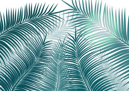 Fond tropical. Feuilles de palmier réalistes. Beauté exotique pour les voyages Conception, promotion et marketing. Illustration vectorielle - Graphiques vectoriels Vecteurs