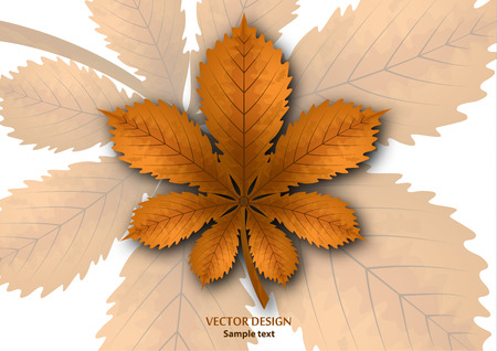 Bright isolated horse chestnut leaf on a white background. Vector illustration for your design.