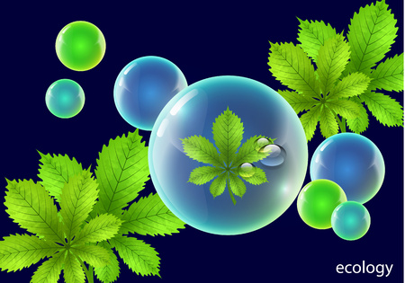 Vector element for environmental design. Water drops in the shape of a shiny ball with bright green chestnut leaves - Vector Graphics