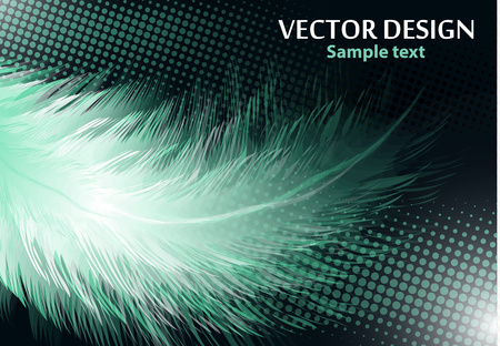 Colorful realistic bird feathers isolated on black background, halftone effects. Vector illustration for your design.