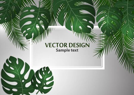 Abstract background, bright exotic monstera leaves and palm leaves on a gray background. Template with place for text. Vector illustration for your design. 向量圖像