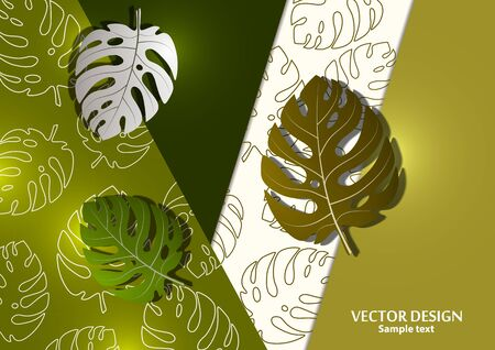 Abstract background, exotic monstera leaves on a bright geometric background. Template with place for text. Vector illustration for your design.
