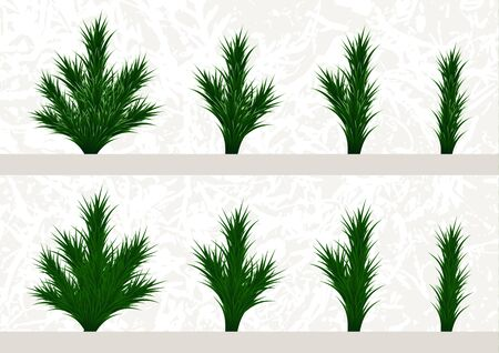 Fir branches and parts of branches set. Different parts of plants to make a Christmas tree. Vector illustration Banque d'images - 133033559