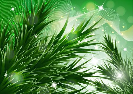 Sparkling christmas decorative background with green spruce branches, magic glare. Vector illustration for your design. Banque d'images - 133033542