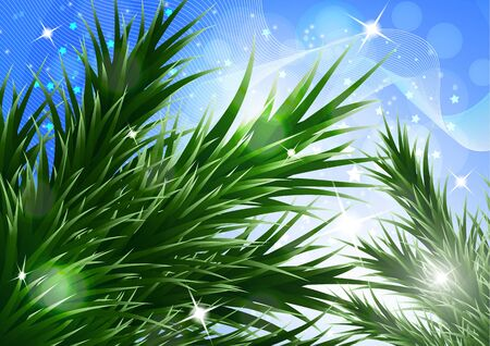 Sparkling christmas decorative background with green spruce branches, magic glare. Vector illustration for your design. Banque d'images - 133280670