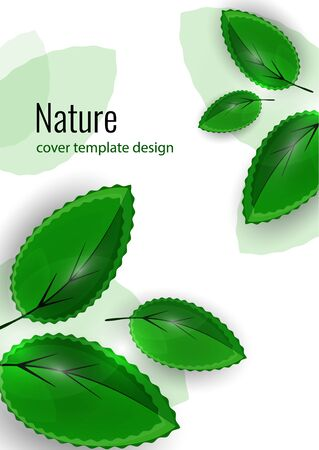 Fresh bright green leaves. Creative summer background for your design. Vector illustration