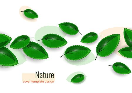 Fresh green leaves on white. Creative abstract background for your design. Vector illustration
