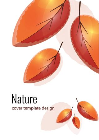 Bright orange and red leaves. Creative autumn background for your design. Vector illustration