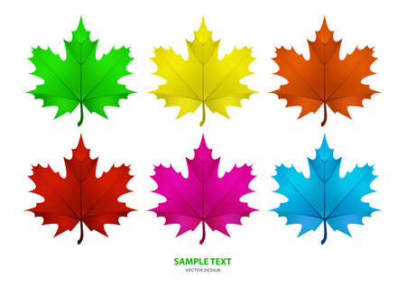 Set of isolated multi-colored maple leaves on a white background. Vector illustration Standard-Bild - 156080326