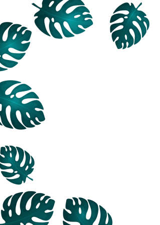 Trendy natural design of bright monstera leaves, place for text, white background. Modern botanical vector illustrations for advertising. Illusztráció