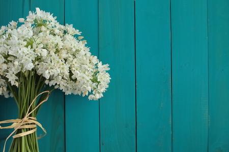 Turquoise achtergrond Stockfoto - 38579861