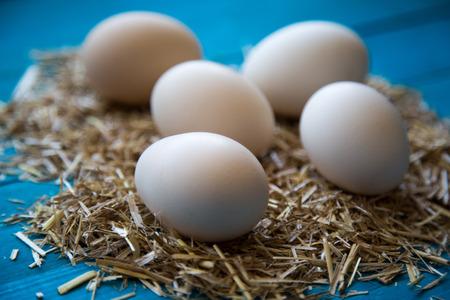 breakfeast: organic eggs