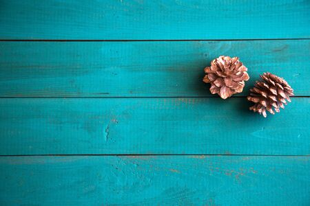 pine cone on turquoise background