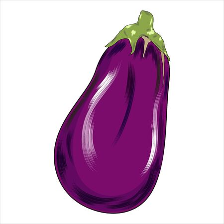 Eggplant, vegetable flat icon, vector sign, One eggplant colorful pictogram isolated on white.