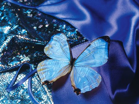 gist: butterfly