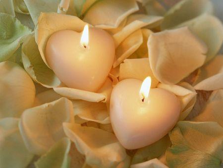 roseleaf: candles