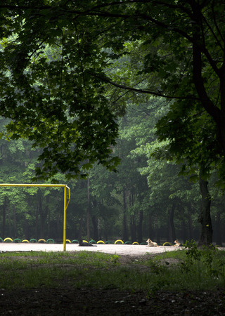 camping pitch: stadium in the forest with a gate for football Stock Photo