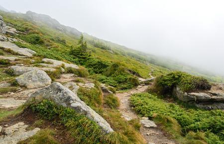 green ridge: Green ridge with rocks and clouds Horizontal
