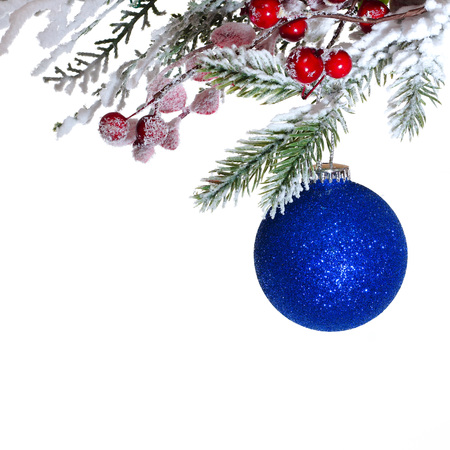 fir branch: Blue Christmas ball on the fir branch. White background Stock Photo