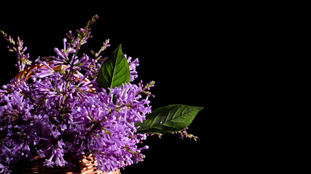 A bouquet of lilac on a black background. Congratulatory background. Lilac in a basket. Black background. Place for text. Stock Photo