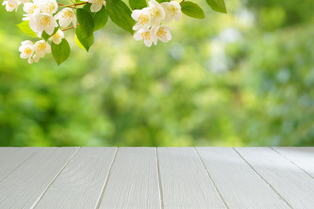 Empty white table with a blurred green background. White wooden table in the background of a summer garden. A branch of blossoming jasmine.