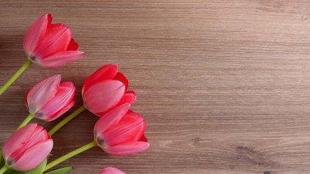 Bouquet of tulips on a wooden background. Congratulatory background with tulips. Copy space. Фото со стока