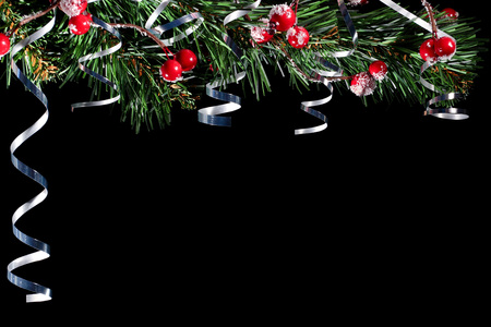 Congratulatory Christmas background. A branch of spruce and serpentine on a black background. Фото со стока