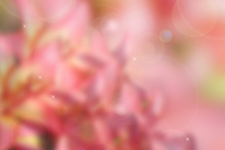 Pink abstract congratulatory background