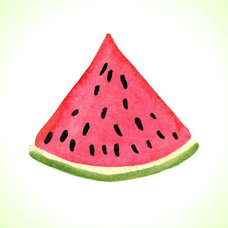 Hand drawn watercolor watermelon illustration