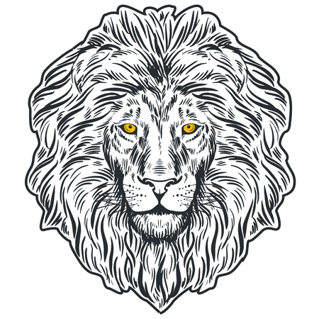 Hand drawn lion head isolated. Banner, poster, card, t-shirt design template. Vector illustration Ilustração