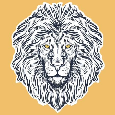 Hand drawn lion head illustration Vektorové ilustrace