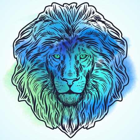 Mano leone disegnato testa illustrazione Archivio Fotografico - 57365257
