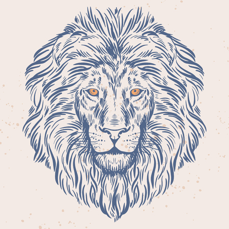 Hand drawn lion head illustration