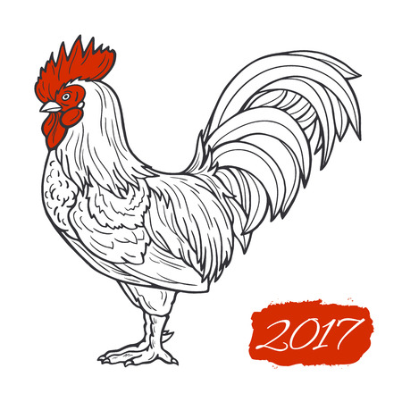 Stylized red rooster hand drawn in lines isolated on white background. 2017 symbol. Vector illustration. Can be used for website background, greeting cards, calendar, printing