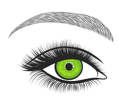 bright eyes: Hand drawn bright eyes with thick, long eyelashes and perfect brows. Stylized decorative makeup. Vector illustration