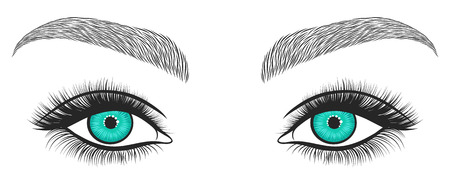 Hand drawn bright eyes with thick, long eyelashes and perfect brows. Stylized decorative makeup. Vector illustration