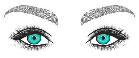 Hand getrokken heldere ogen met dikke, lange wimpers en een perfecte wenkbrauwen. Gestileerde decoratieve make-up. vector illustratie