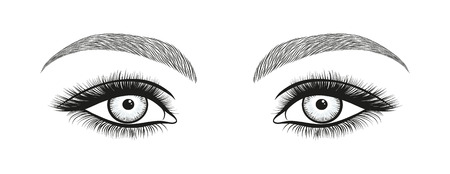 Stylized decorative makeup set Hand drawn bright eyes with thick, long eyelashes and perfect brows. Illustration