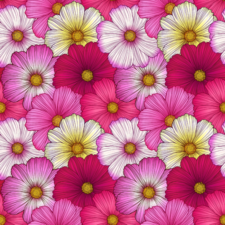 asteraceae: Cosmos flowers seamless pattern. Hand drawn vector illustration