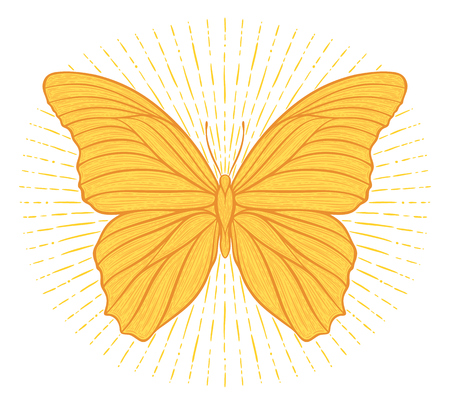 Stylized ethnic boho butterfly with shining lights effect isolated on white. Decorative doodle vector illustration. Perfect for postcard, poster, print, greeting card, t-shirt, phone case design Illustration