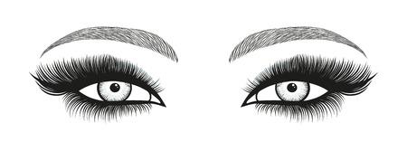 Gestileerde decoratieve make-up set. Hand getrokken heldere ogen met dikke, lange wimpers en perfecte wenkbrauwen. Vector illustratie