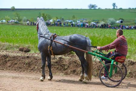 CEADIR-LUNGA/GAGAUZIA - 05.06.2016: Rider on a horse race on hippodrome. Horse carriage racing in Moldova. Editorial