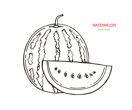 Vector image. Picture of the outline of an watermelon. Sliced watermelon imitation of ink