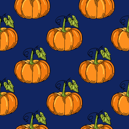 Seamless pattern with pumpkins. Vector illustration. Hand drawn