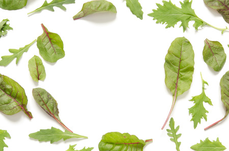 Green leaves of salad mix on white background.